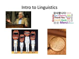 Intro to Linguistics
