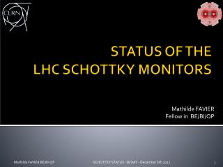 STATUS OF THE  LHC SCHOTTKY MONITORS