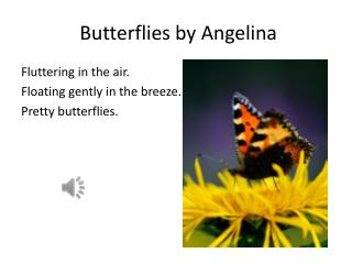 Butterflies by Angelina