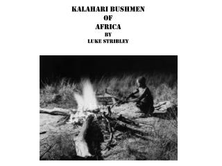 Kalahari bushmen of  africa by  Luke  Stribley