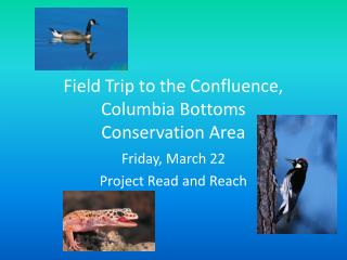 Field Trip to the Confluence, Columbia Bottoms  Conservation Area