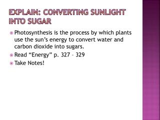 Explain: Converting Sunlight into Sugar