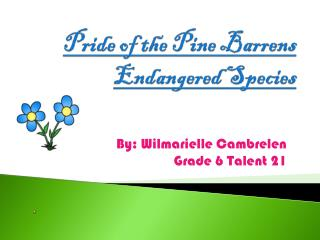 Pride of the Pine Barrens Endangered Species