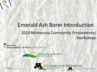 Emerald Ash Borer Introduction