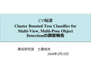 CV 輪講 Cluster Boosted Tree Classifier for Multi-View, Multi-Pose Object Detection の調査報告