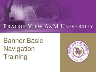 Banner Basic  Navigation Training