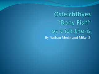 "Osteichthyes "" B ony Fish"" os-t-ick-the-is"