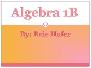 Algebra 1B