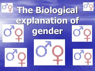 The Biological explanation of gender