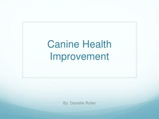 Canine Health Improvement