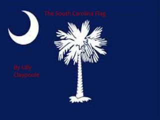 The South Carolina Flag