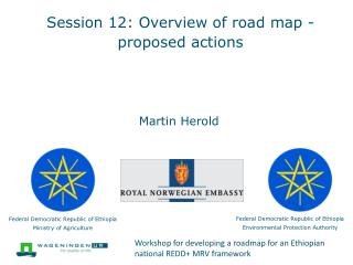 Session 12: Overview of road map -proposed actions