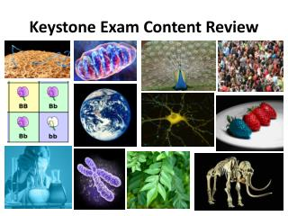 Keystone Exam Content Review