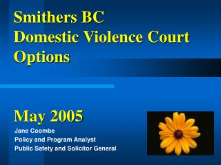 Smithers BC Domestic Violence Court Options May 2005