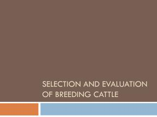 Selection and Evaluation of  Breeding Cattle