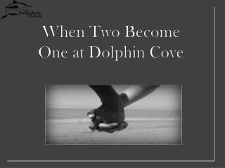 When  T wo  B ecome One at Dolphin Cove