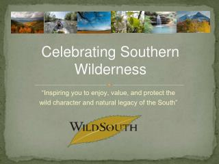 Celebrating Southern Wilderness
