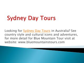 Affordable Blue Mountain Tour Service in Australia