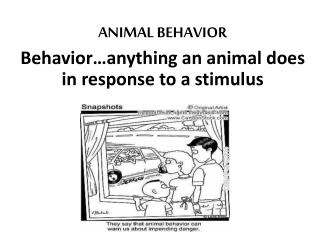 ANIMAL BEHAVIOR Behavior…anything an animal does in response to a stimulus