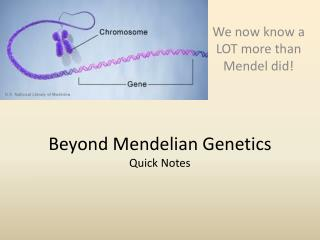 Beyond  Mendelian  Genetics Quick Notes