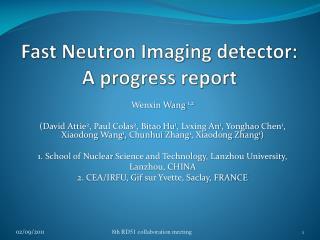 Fast Neutron Imaging detector: A progress report