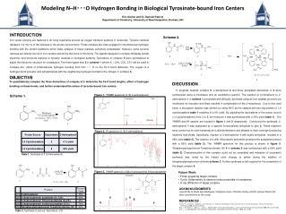 Modeling N–H・・・O Hydrogen Bonding in Biological Tyrosinate -bound Iron Centers