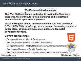 Web Platform Job Opportunities