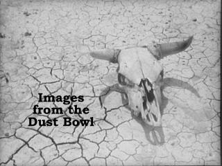 Images   from the  Dust Bowl