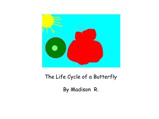 The Life Cycle of a Butterfly  By Madison  R.