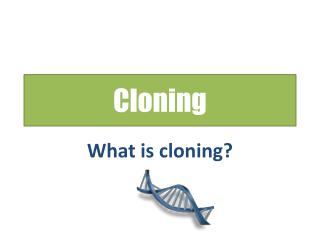 animal cloning taken too far Should human cloning be banned [first section excerpted from this article here] what is reproductive cloning (aka adult dna cloning) cloning is the production of one or more individual plants or animals that are genetically identical to another plant or animal.