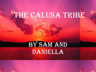 The calusa tribe