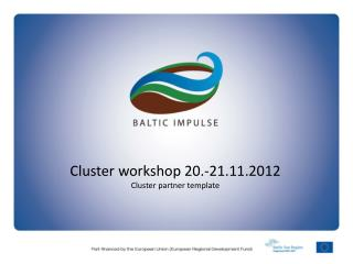 Cluster workshop 20.-21.11.2012 Cluster partner template