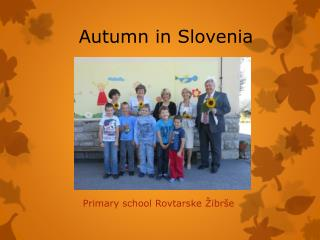 Autumn  in  Slovenia