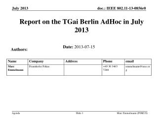 Report on the  TGai  Berlin  AdHoc  in July 2013