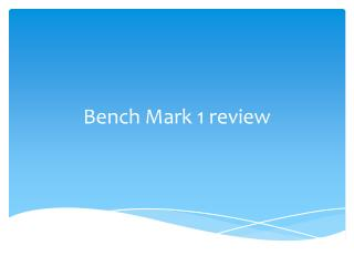 Bench Mark 1 review