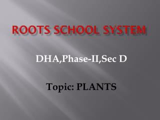 ROOTS SCHOOL SYSTEM
