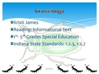 Gross Bugs