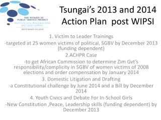 Tsungai's  2013 and 2014 Action Plan  post WIPSI