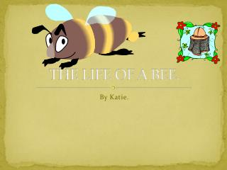 THE LIFE OF A BEE.