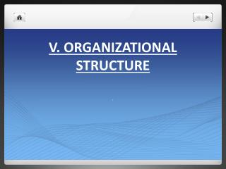 V. Organizational Structure