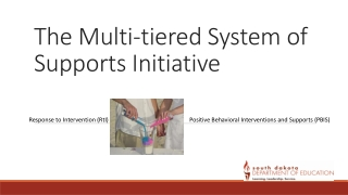 The Multi-tiered System of Supports Initiative