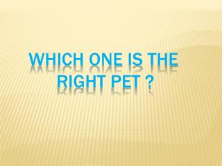 which one  is  the right  pet ?