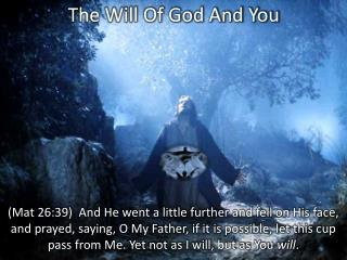 The Will Of God And You