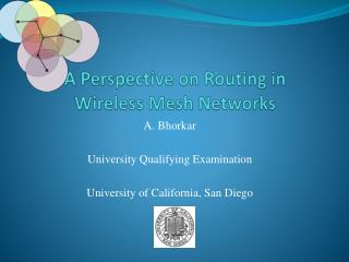 A Perspective on Routing in  Wireless Mesh Networks