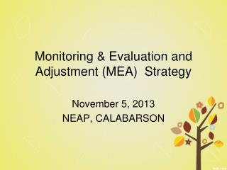 Monitoring & Evaluation and Adjustment (MEA)  Strategy