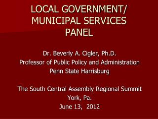 LOCAL GOVERNMENT/ MUNICIPAL SERVICES PANEL