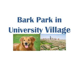 Bark Park in University  Village