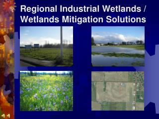 Regional Industrial Wetlands / Wetlands Mitigation Solutions
