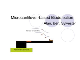 Microcantilever-based Biodetection