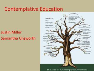 Contemplative Education
